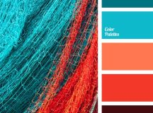 Best 25+ Coral color palettes ideas only on Pinterest