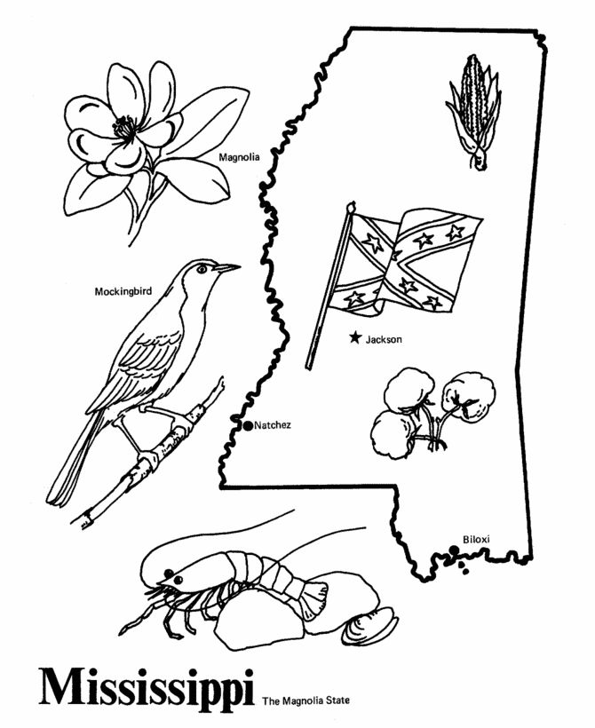 17 Best images about State Coloring Pages on Pinterest
