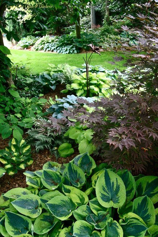 Les 297 Meilleures Images à Propos De Shade Garden Ideas Sur