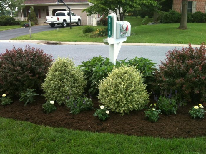 25 Best Ideas About Mailbox Landscaping On Pinterest Mailbox
