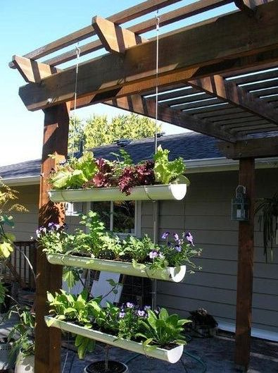 25 Best Ideas About Hanging Herb Gardens On Pinterest Herb Wall