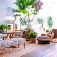 Best 25+ Tropical Decor ideas on Pinterest   Tropical ...