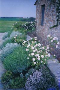 25+ best ideas about Cottage garden design on Pinterest ...