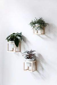 Best 25+ Wall planters ideas on Pinterest | Natural framed ...