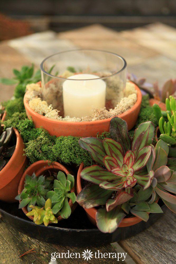Make This Stunning Terra Cotta Pot Succulent Centerpiece
