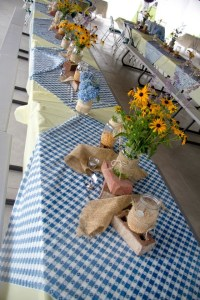 Tables decorated for our picnic reception. | Wedding Ideas ...