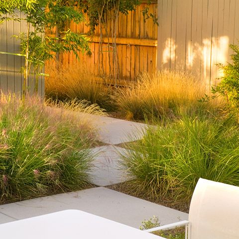 11 Best Images About Contemporary Modern Garden Design