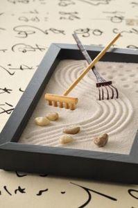 Miniature Zen Garden Ile Ilgili Pinterest'teki En Iyi 25'den Fazla