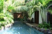 1000+ ideas about Pool Plants on Pinterest | Plants ...