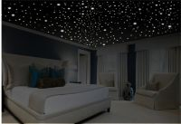 1000+ ideas about Ceiling Stars on Pinterest | Track ...