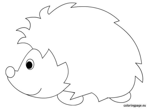 Hedgehog coloring sheet Printable Pinterest Coloring