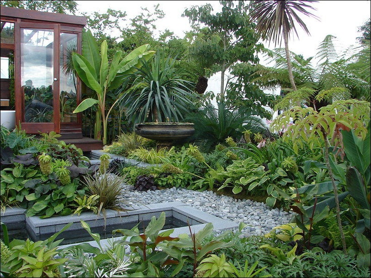 25 Best Ideas About Jungle Gardens On Pinterest Garden Oasis