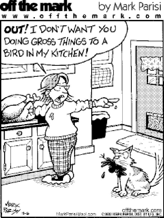107 best images about Thanksgiving Humor on Pinterest