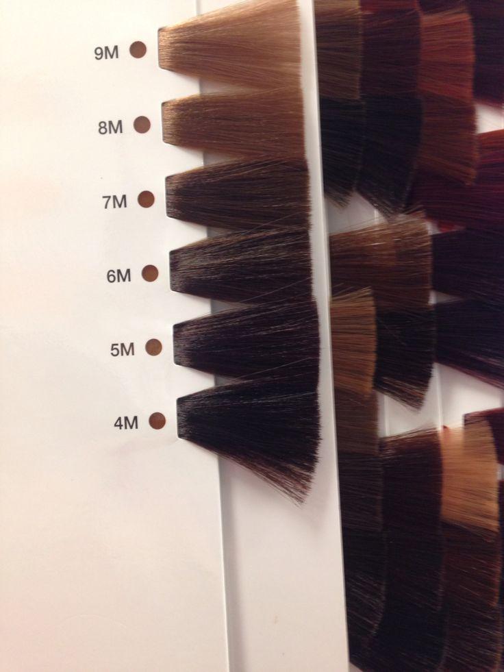 407 Best Images About Hair Mocha Mokka On Pinterest Ion