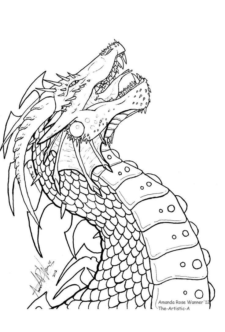 558 best images about Dragons to Color on Pinterest