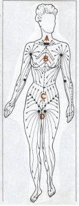 32 best images about Lymphatic drainage on Pinterest