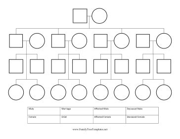 Pedigree chart critical thinking worksheet