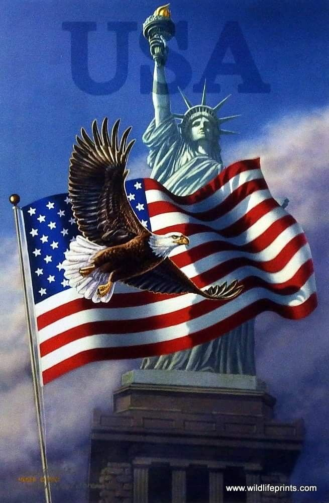 1036 Best Images About GOD BLESS AMERICA On Pinterest