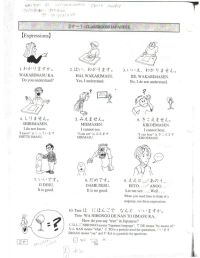 Japanese homework sheets