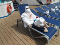 77 best images about Cruise Ship Towel Animals on ...