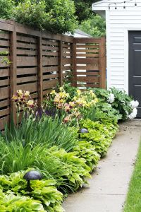 25+ best ideas about Privacy fence landscaping on ...