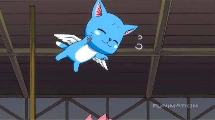 Cute Sleeping Kitten Wallpaper Baby Happy Kawaii Desu Fairy Tail Pinterest The