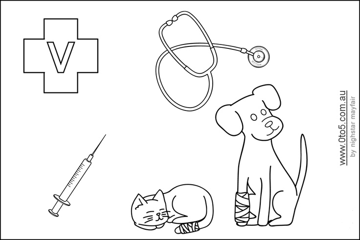 17 Best images about Kid's Corner at the Veterinary