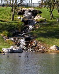 25+ best ideas about Pond construction on Pinterest