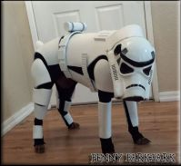 Stormtrooper Penny | DIY Dog Costumes | Pinterest | Pennies