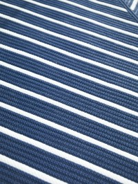 blue and white striped indoor/outdoor rug has crisp ...