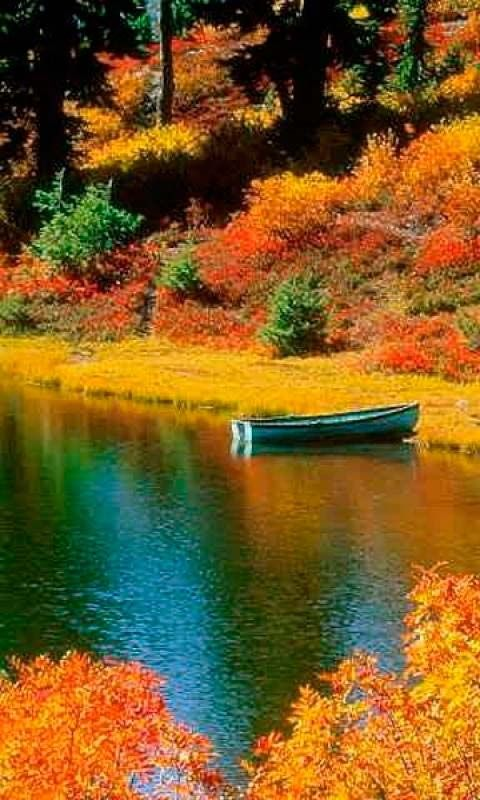 Fall Colors Wallpaper New England A Boat On A Peace Lake New Hampshire I Want To Go See