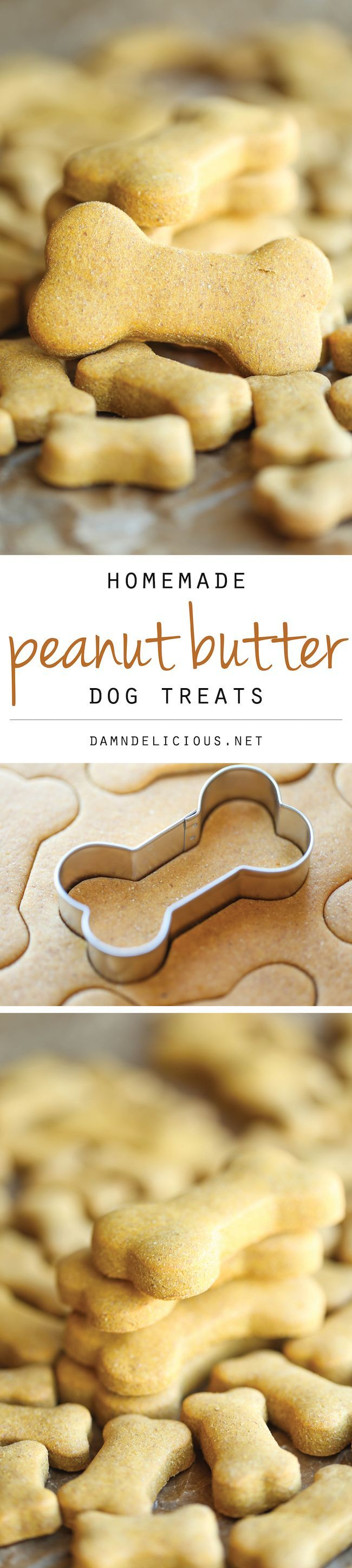 Homemade Peanut Butter Dog Treats – The easiest homemade dog treats ever – simply mix, roll and cut. Easy peasy, and so much