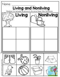 17 Best ideas about Preschool Social Studies on Pinterest