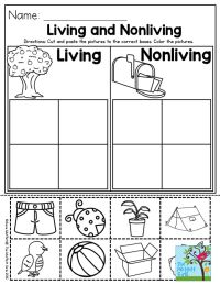 17 Best ideas about Preschool Social Studies on Pinterest ...