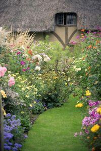 Best 20+ Cottage gardens ideas on Pinterest | Lupine ...