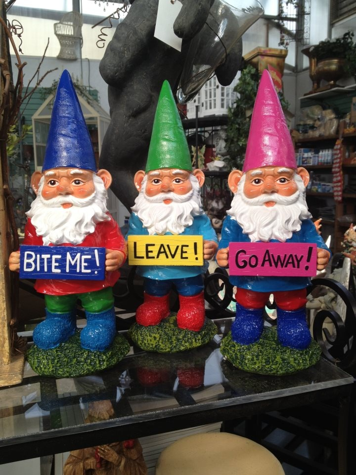 25 Best Ideas About Garden Gnomes On Pinterest Gnomes Gnome