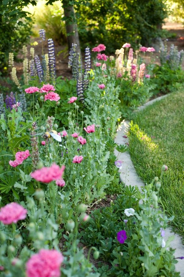 25 Best Ideas About Flower Garden Borders On Pinterest Flower