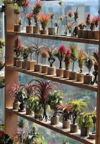1000+ images about Garden Center Merchandising Display ...