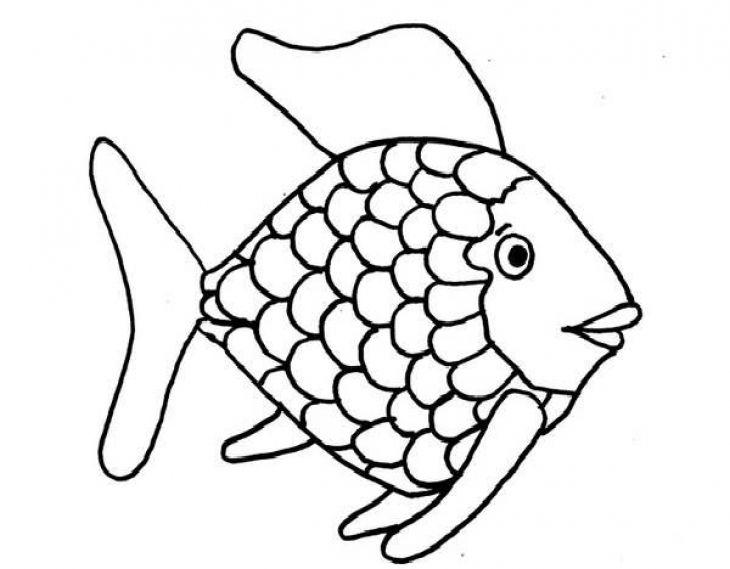 25+ Best Ideas about The Rainbow Fish on Pinterest