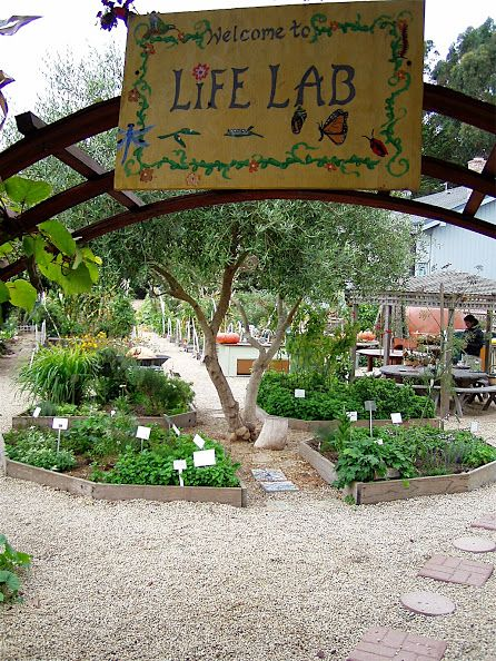 407 Best Images About ✿ School Garden ✿ On Pinterest Children