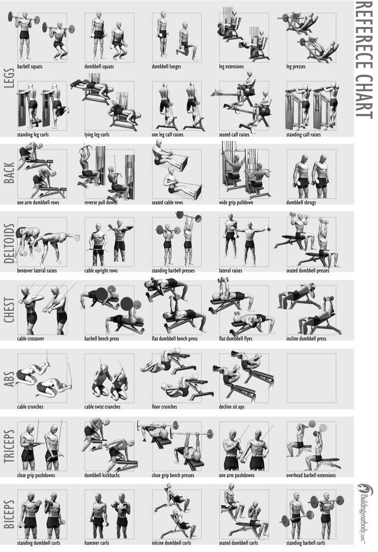17 Best ideas about Weight Training Schedule on Pinterest
