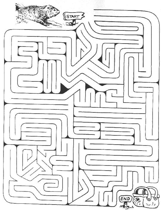 33 best images about Mazes & word puzzles on Pinterest
