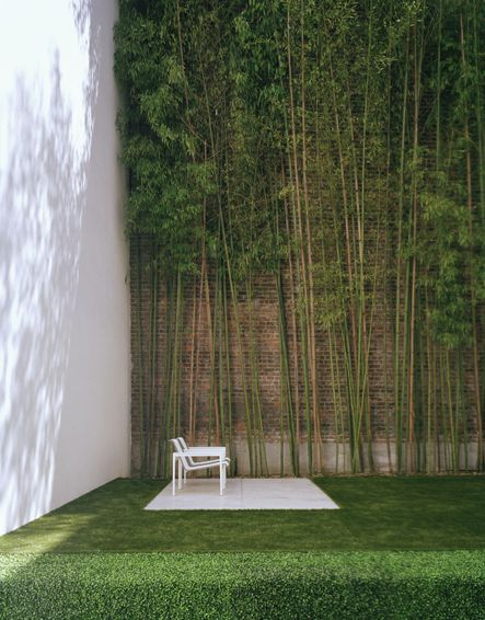 Best 25 Bamboo Wall Ideas On Pinterest Bamboo Garden Bamboo