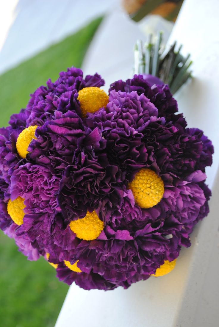 Vivid purple carnation bridal bouquet with contrasting bright yellow  Contrast  Pinterest