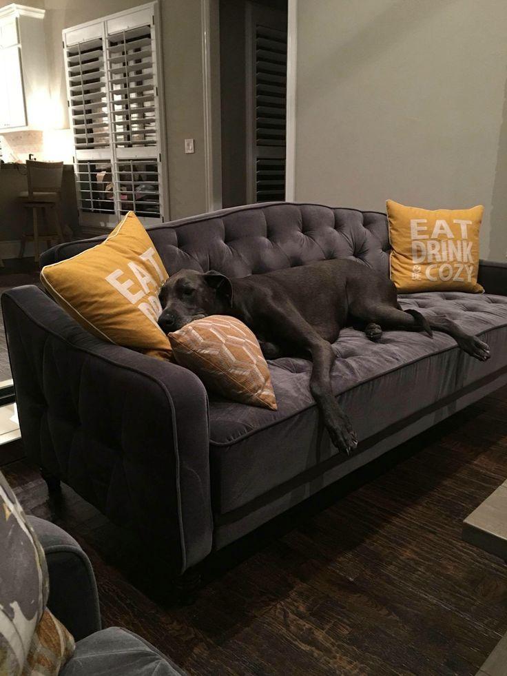1000 ideas about Futon Sofa Bed on Pinterest  Futon Sofa