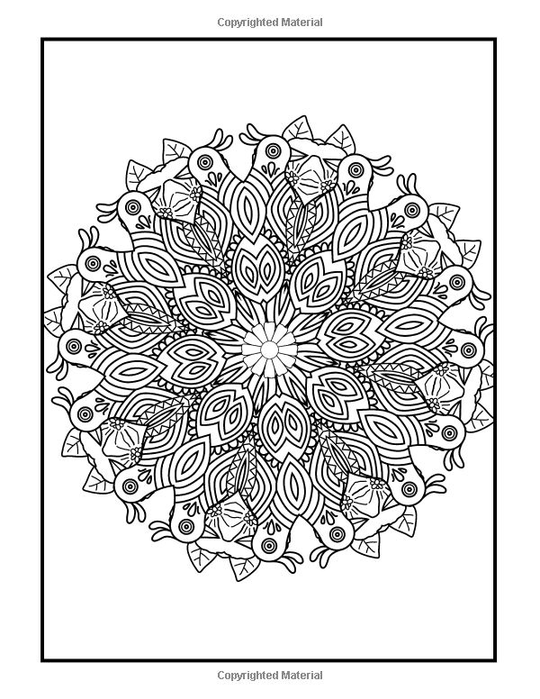 Amazon.com: Coloring Books for Grownups Feather Feastival