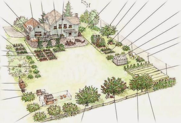 students design garden