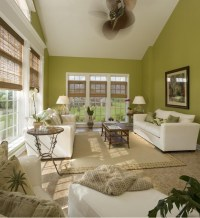 Living Room with green walls | Home