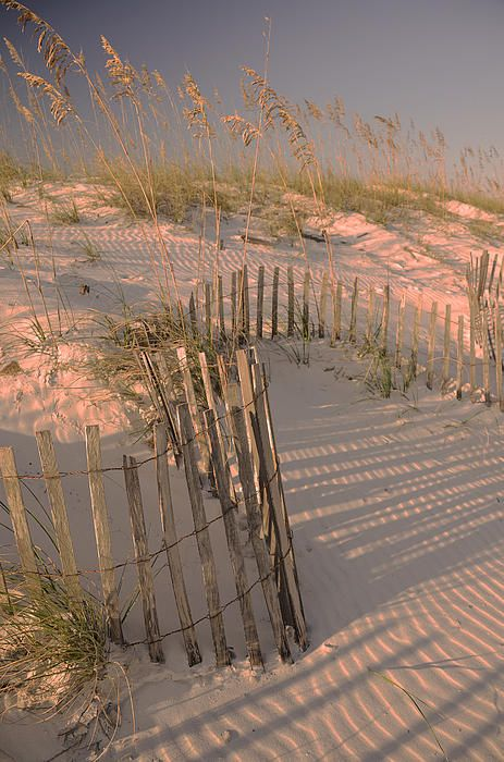 Dunes, Orange Beach, AL – BEAUTIFUL!