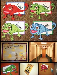 17 Best images about Bulletin Boards on Pinterest | Dr ...